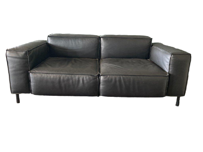 DS 21 Sofa 2 seater